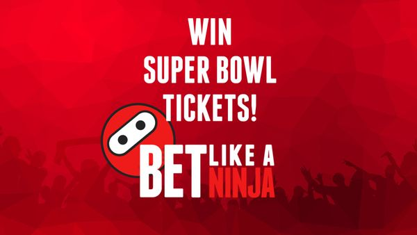 """Bet Like a Ninja"" marketing campaign"